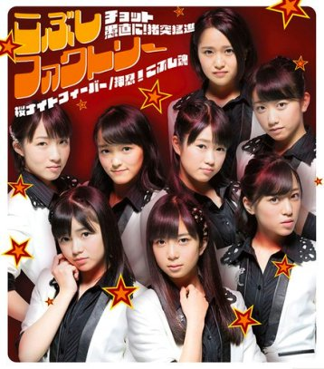 Kobushi Factory Chotto Guchoku Regular B Cover