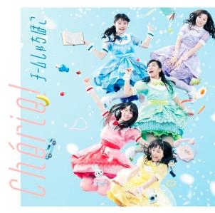 Team Syachihoko Cherie Cover Regular