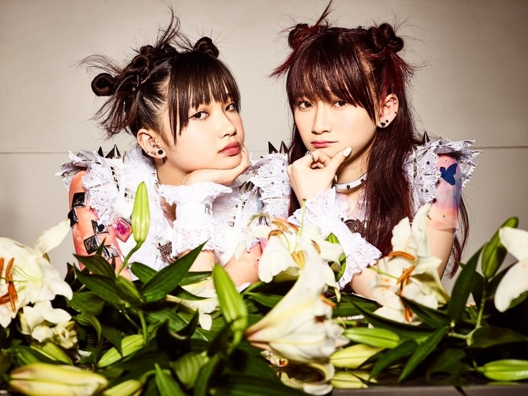 The Idol Formerly Known as LADYBABY Pelo