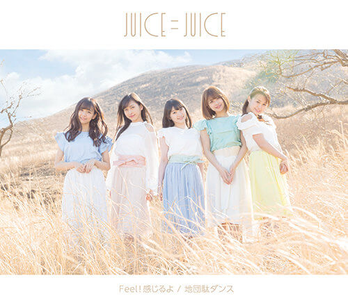 Juice=Juice Jidanda Dance Cover Regular B