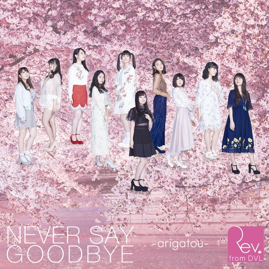 Rev.from DVL NEVER SAY GOODBYE -arigatou- Cover Regular