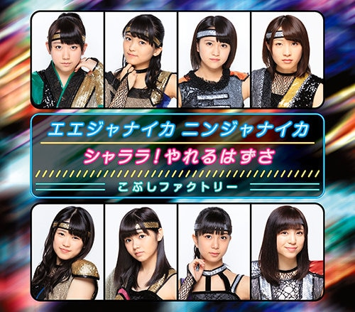 Kobushi Factory Shalala Ninja Cover Regular B