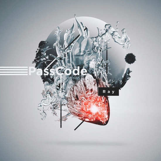 passcode ray cover limited