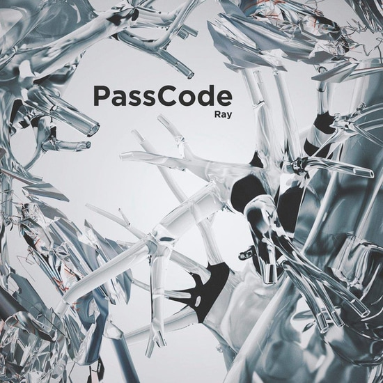 passcode ray cover regular