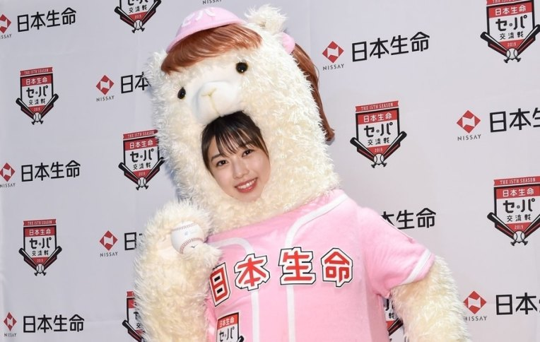makino maria alpaca
